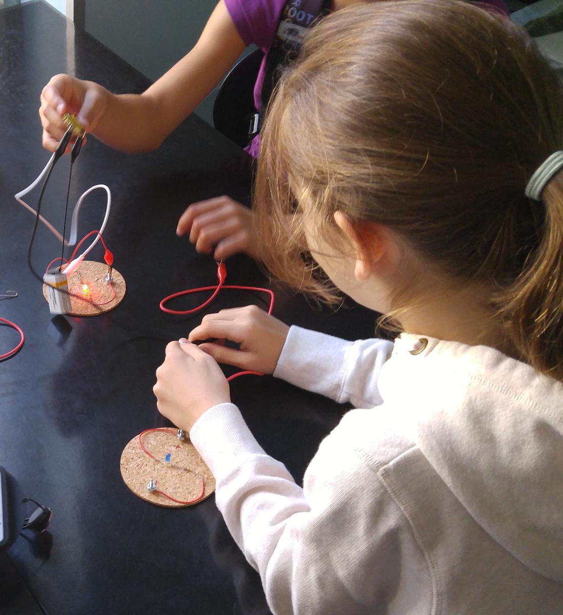 photo de l'activité Électricité et Circuits